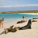 Learn-Spanish-in-the-Galapagos